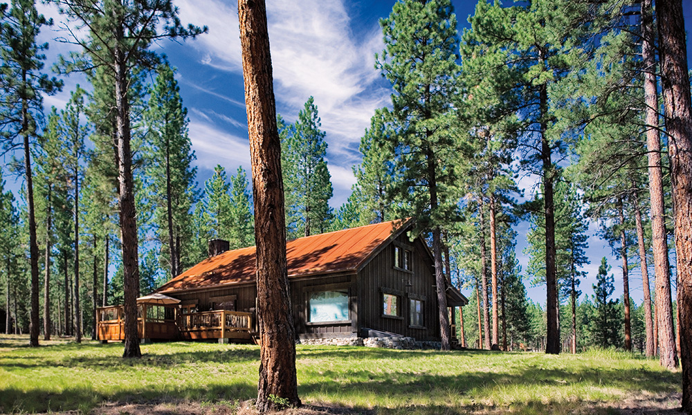 paws_up_resort_exterior_cabin