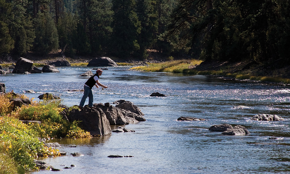 paws_up_resort_exterior_fishing