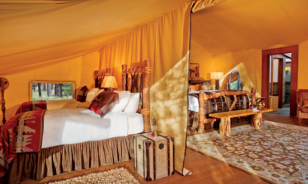 paws_up_resort_interior_guestroom2