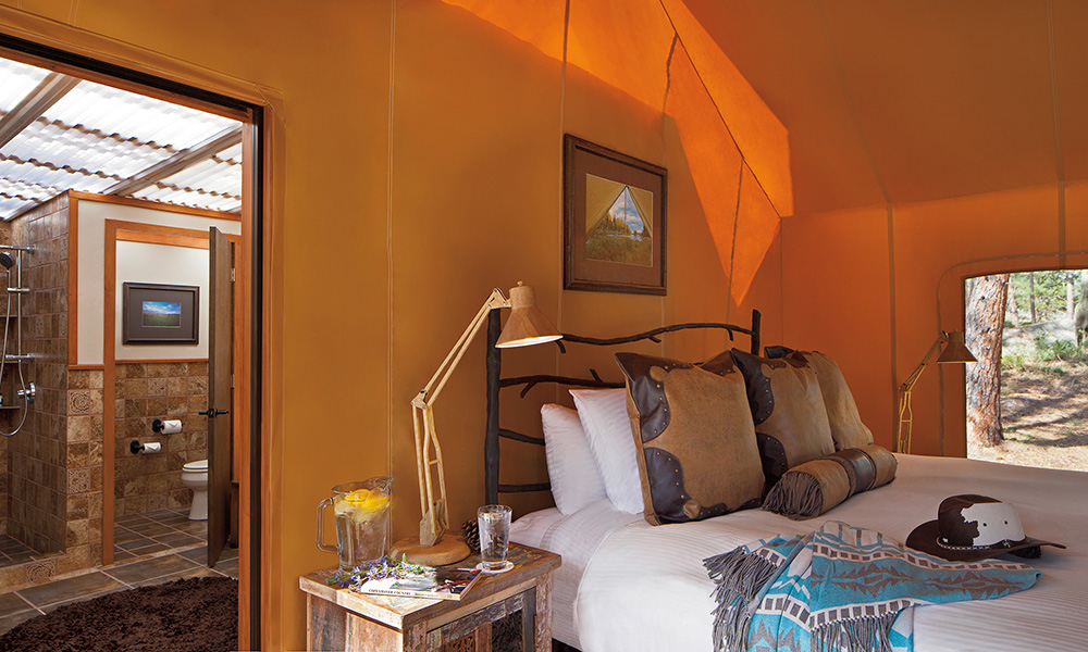paws_up_resort_interior_guestroom3